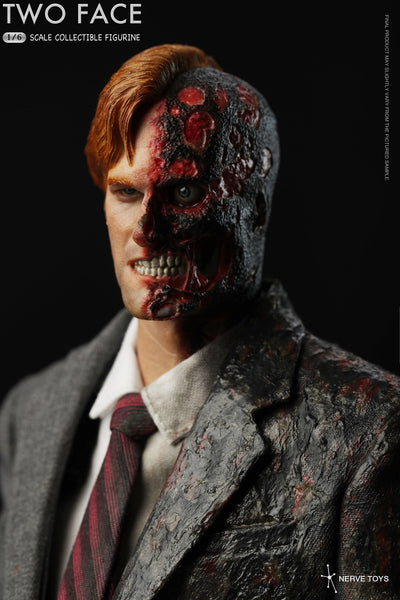 1/6 Scale Two Face Figure by Nerve Toys