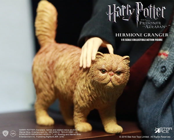 1/6 Scale Harry Potter and the Prisoner of Azkaban Hermione Granger Teenager Figure by Star Ace Toys