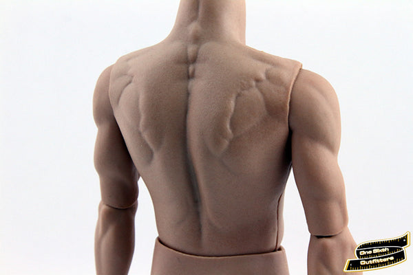 1/6 Scale Asian Muscular Body