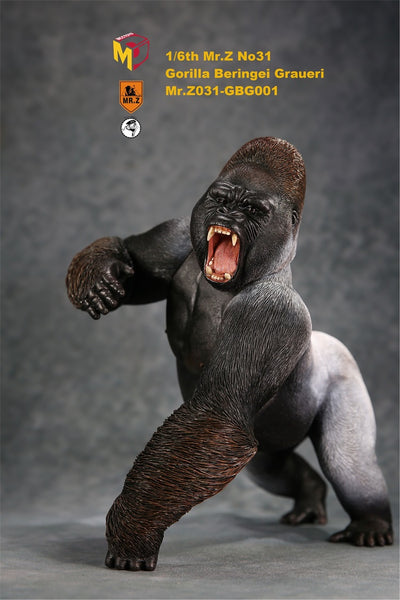 1/6 Scale Black Gorilla Beringei Graueri Figure by Mr.Z
