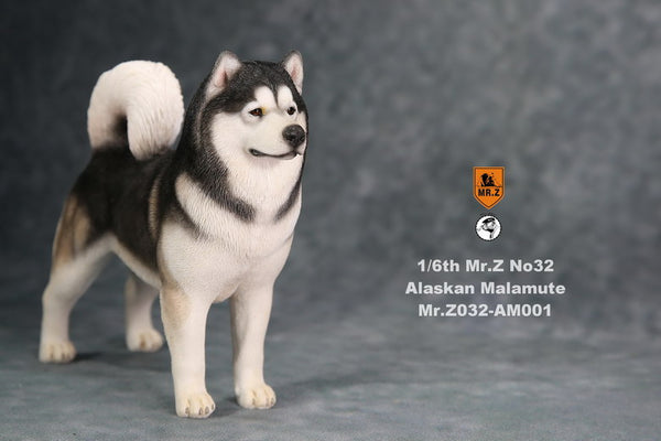 1/6 Scale Alaskan Malamute Dog by Mr.Z