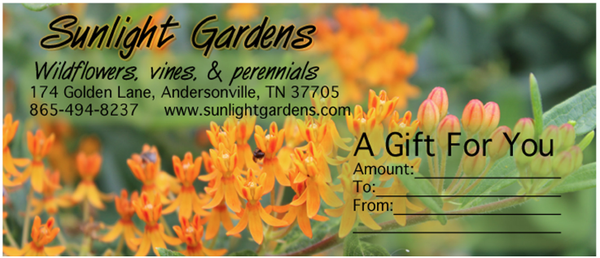 Gift certificates <h3>Order in multiples of $25</h3>