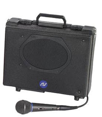 Portable Audio Systems