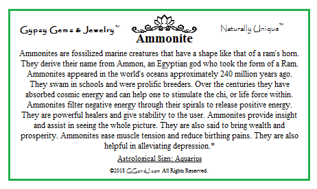 Gypsy Gems & Jewelry Ammonite Facts