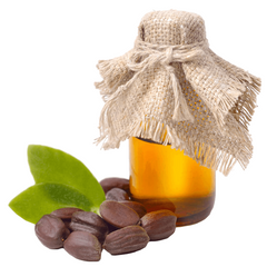 jojoba oil naturally unique
