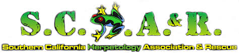 Southern California Herpetology Association & Rescue Logo on GGandJ.com