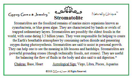 Stromatolite info card on GGandJ.com