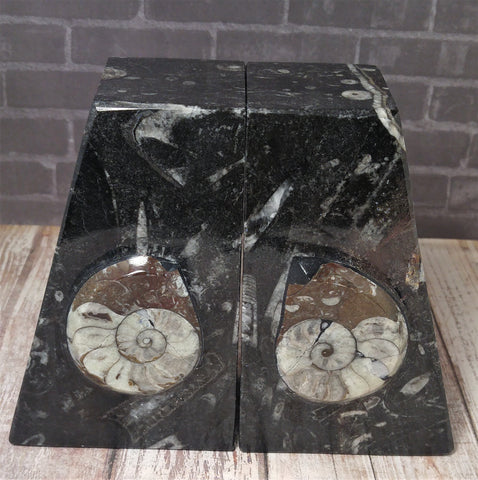 GGandJ.com Fossil Bookend Set - Pair B