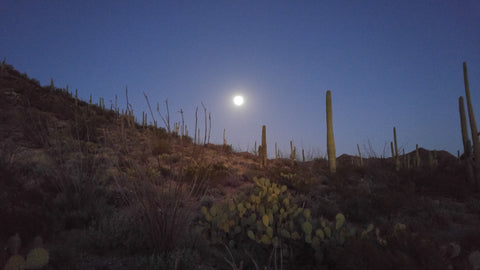 """Desert Moon"" Photo of Moon over desert landscape by Heather Brown GGandJ.com"