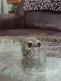 Home Decor Gemstone Mineral Naturally Unique Kambaba Jasper Skull in Living Room on GGandJ.com