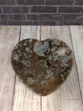 Fossil Plate Heart Shaped Gift