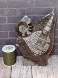 Fossil Statue with thread spool size reference