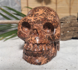 Terrarium Decor ggandj.com Large Gemstone Skull