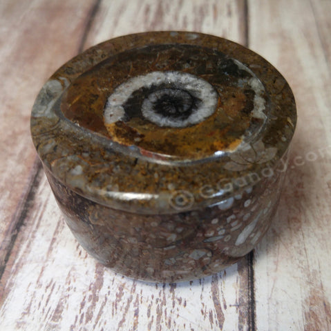 Moroccan Fossil Ring Box A