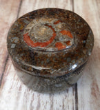 Moroccan Fossil Ring Box C