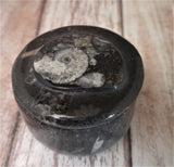 Moroccan Fossil Ring Box E