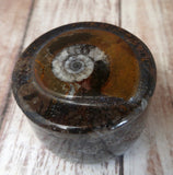 Moroccan Fossil Ring Box H