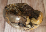 Natural Septarian from Madagascar Carved Heart Gemstone Yellow Calcite Brown Aragonite GGandJ.com