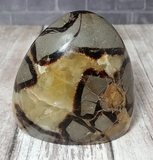 Gypsy Gems & Jewelry™ Naturally Unique™ Septarian Freeform from Madagascar Yellow Brown Gray Gemstone Mineral Dragon Stone