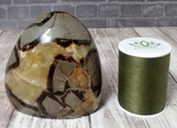 Natural Septarian Gemstone with Size Reference