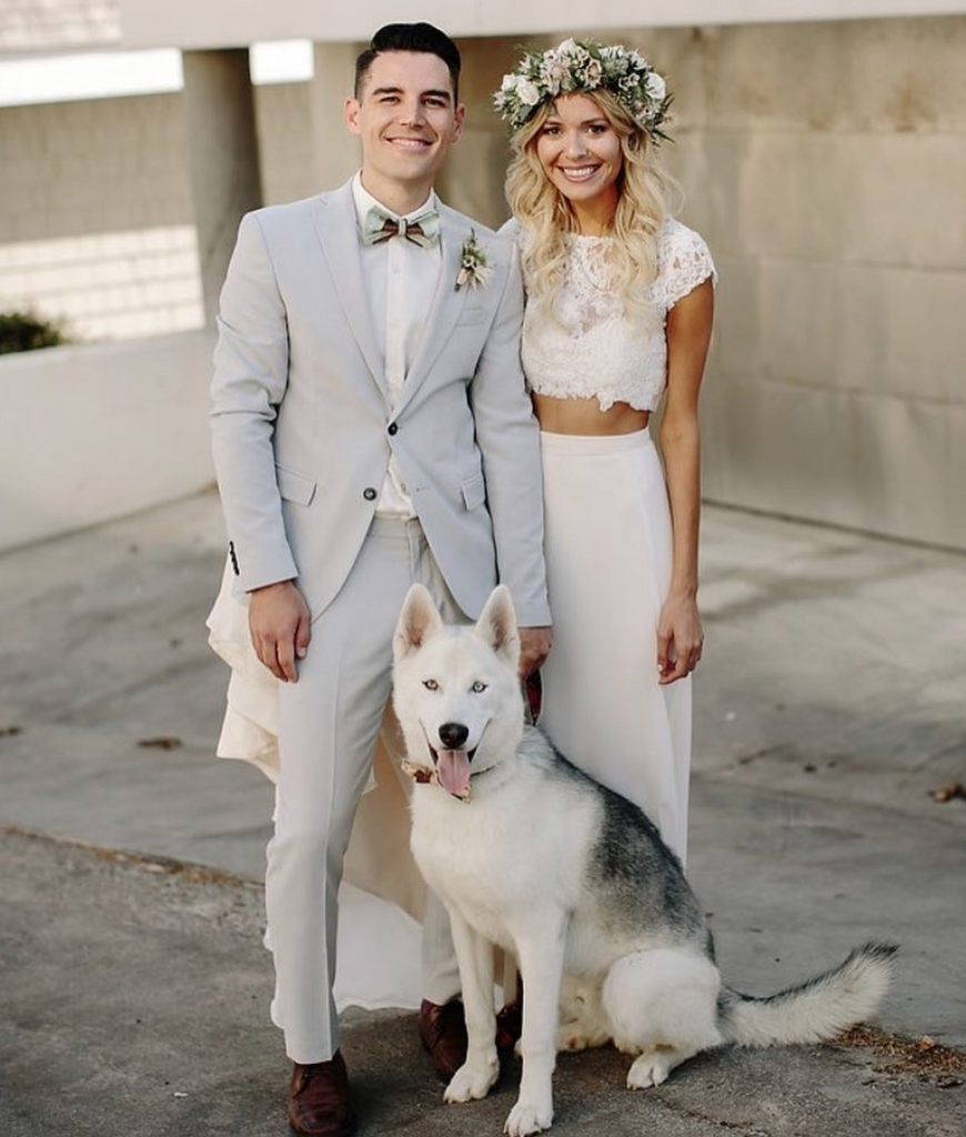 21 Dogs that crashed their Humans' Wedding