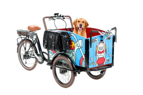 Ride Around in Style on this $4,000 Dog-Friendly Bike