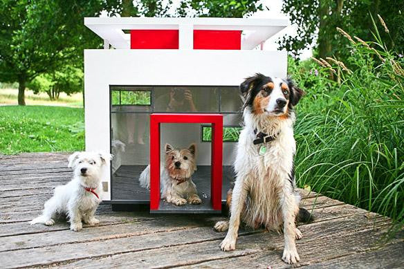 9 Extreme Dog Houses for the Ultimate Dog Lover
