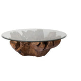 Natura Root Coffee Table