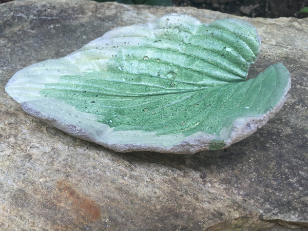 Soap Dish - Naturally Imprinted with Leaves