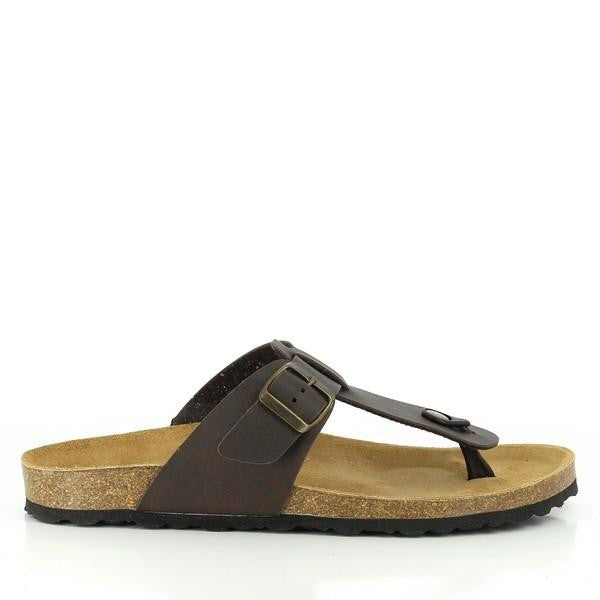 Plakton 100012 Dark-Brown