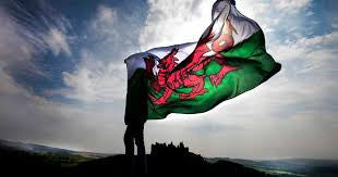 Flying Welsh Dragon