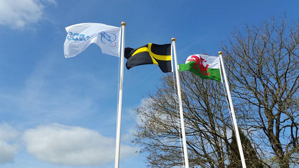 Edwards Coaches flags by Red Dragon Flagmakers, Brand flags, National flags, Welsh flags