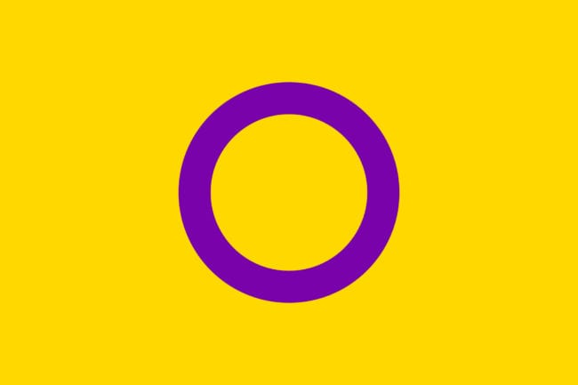 Intersex lgbt pride flags by red dragon flagmakers