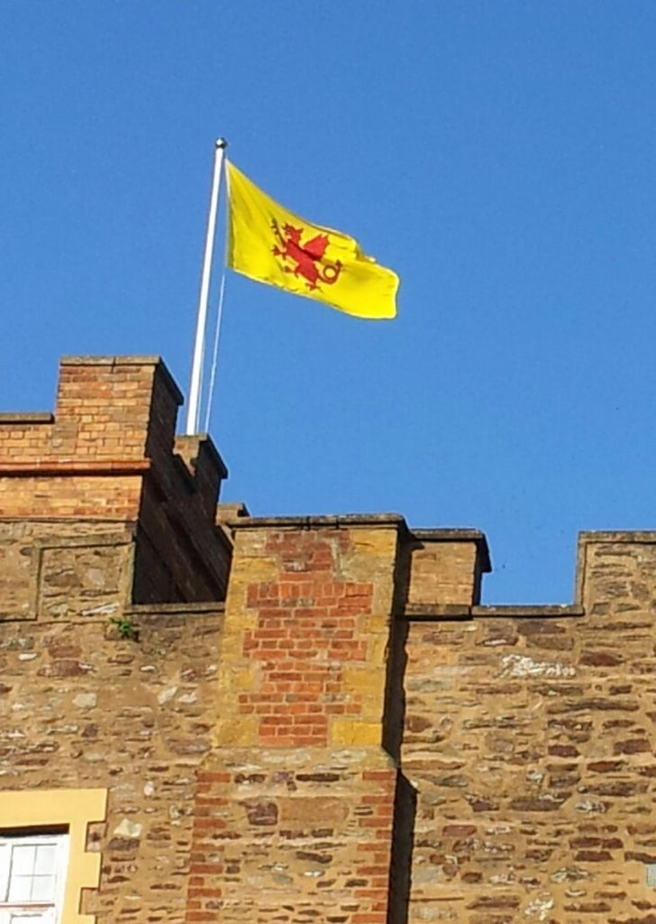 Somerset county flag Creech Castle Taunton Robin Ashburner Red Dragon Flagmakers
