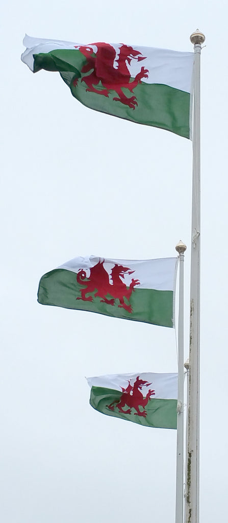 Swansea airport flags and flagpoles