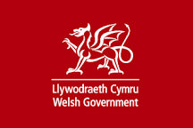 Flags for Welsh Government by Red Dragon Flagmakers