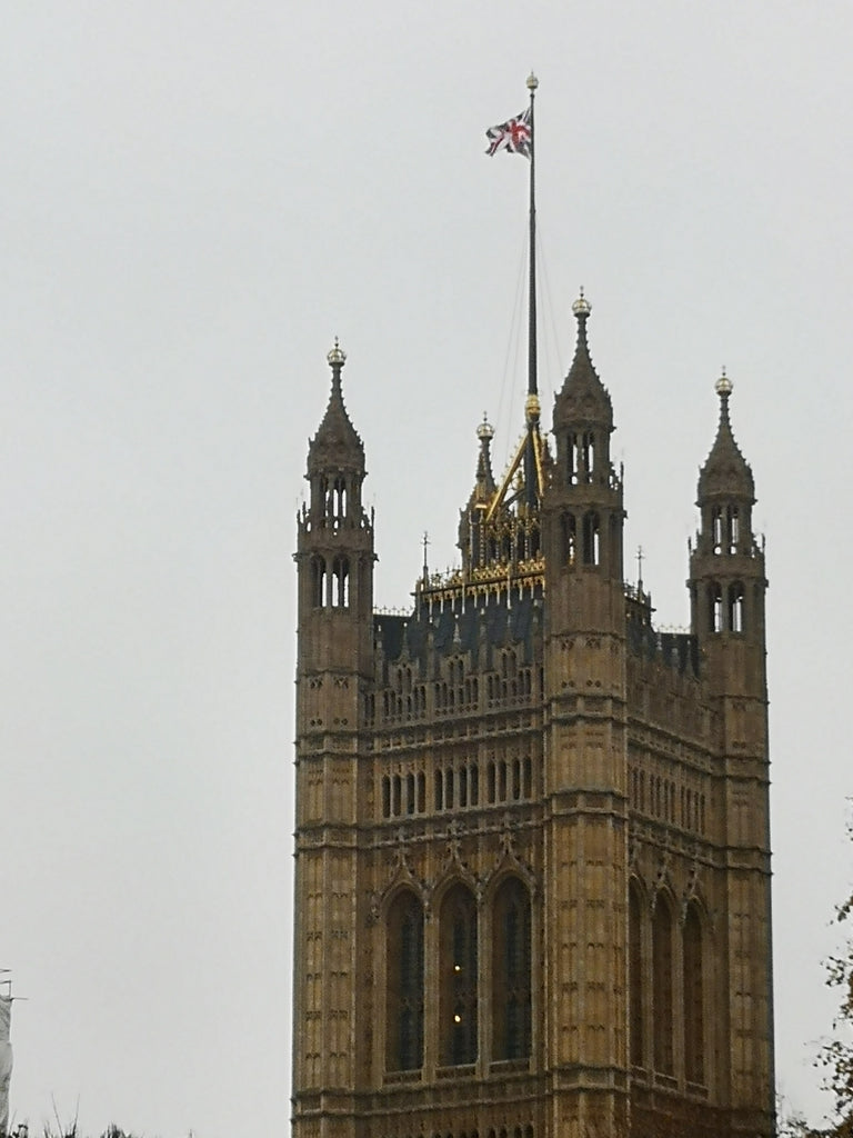 Flagpole on Westminster Palace by Robin Ashburner Red Dragon Flagmakers