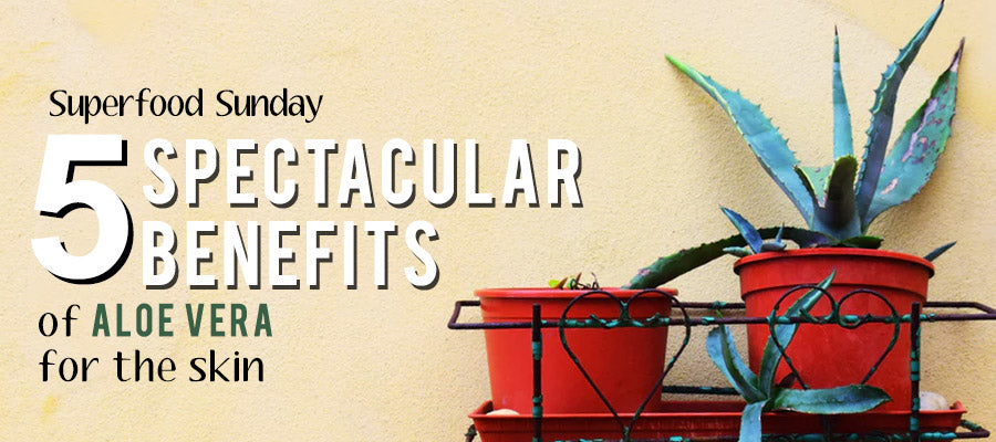5 Spectactular Benefits of Aloe Vera for the Skin
