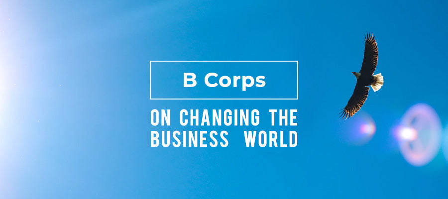 B Corps on Changing the Business World