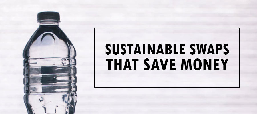 5 Sustainable Swaps that Save You Money
