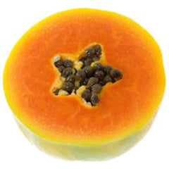 Carica Papaya in Bahama Brown Self Tan