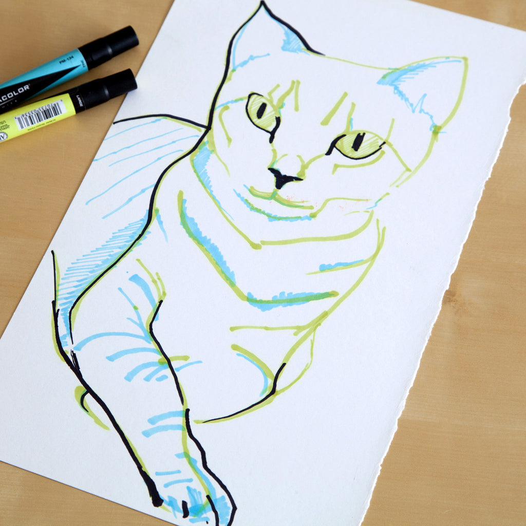 Currently working on : Cat drawings