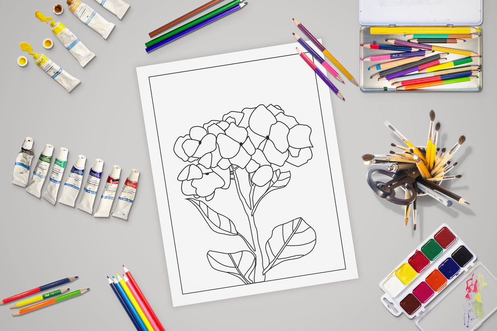 Free Coloring Page for Adults and Kids - Hydrangea