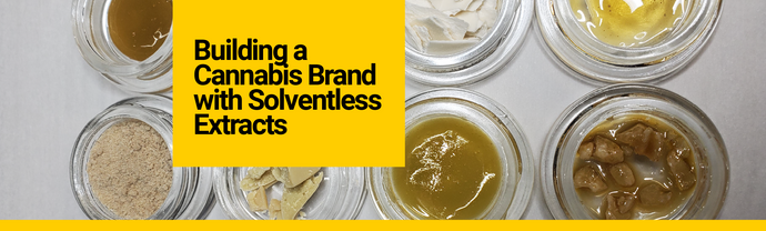 Building a Cannabis Brand with Solventless Extracts