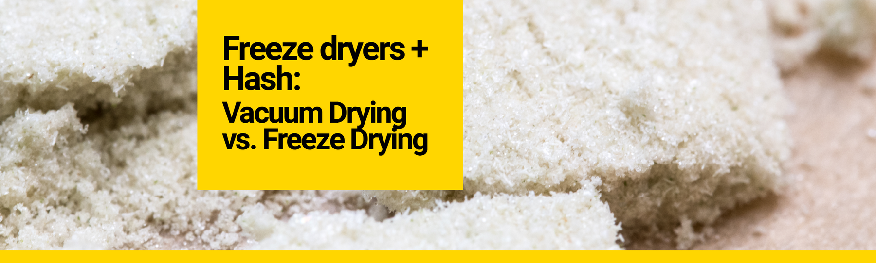 Freeze Dryers and Bubble Hash: Vacuum Drying vs. Freeze Drying