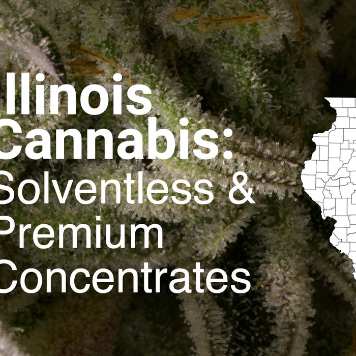 Illinois Cannabis Processors Premium Solventless Rosin Extraction PurePressure