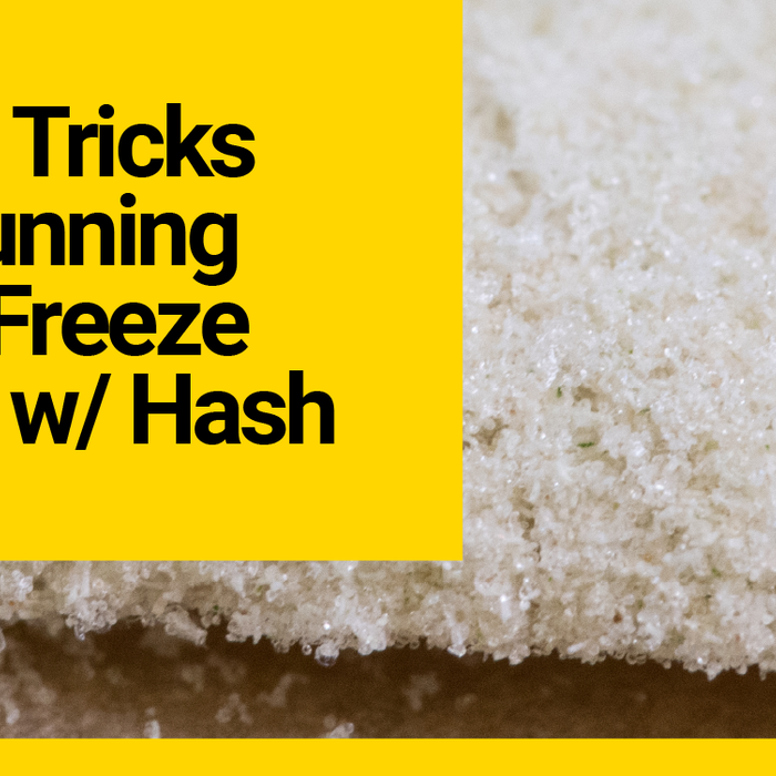 Top 5 Tricks for Running Your Harvest Right Freeze Dryer for Bubble Hash
