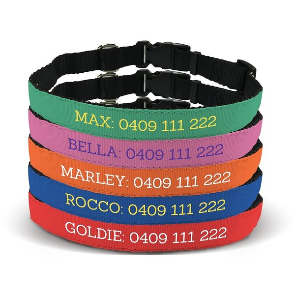 Design Your Own Pet Collar - Large