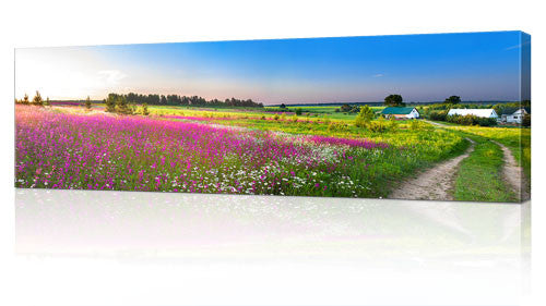 "20 x 60"" (50x 152cm) Canvas Prints"