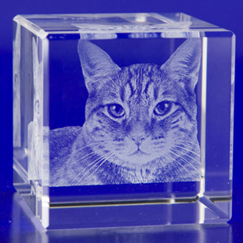 2D Crystal Portraits 50mm Cube